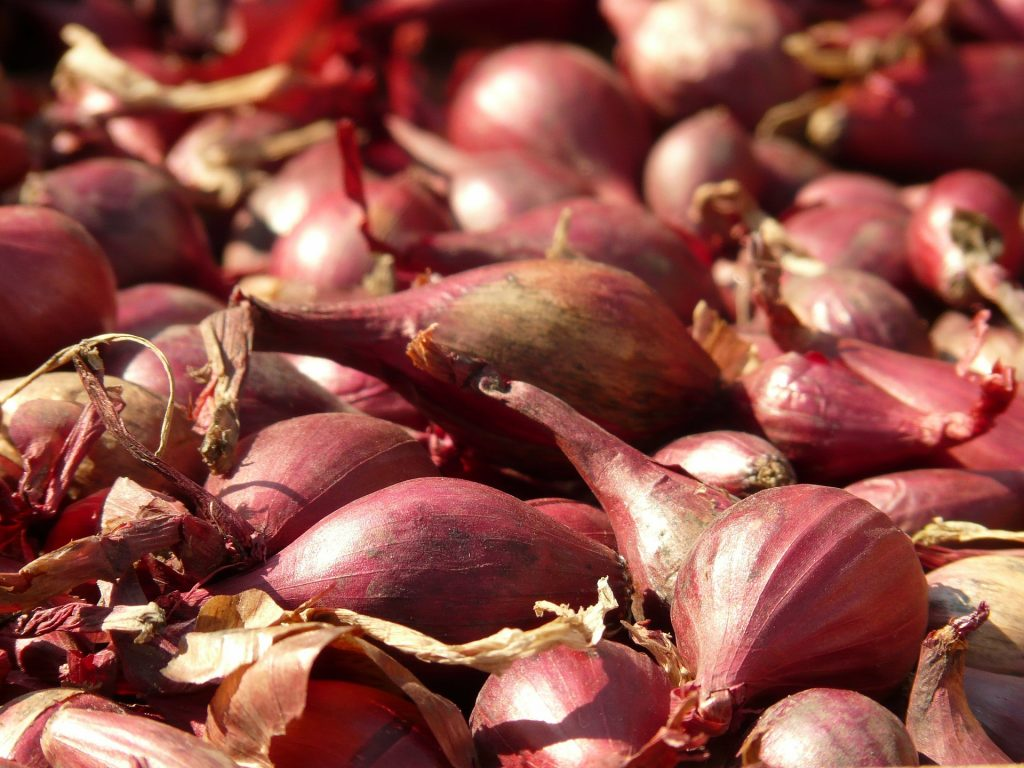 Red Shallots