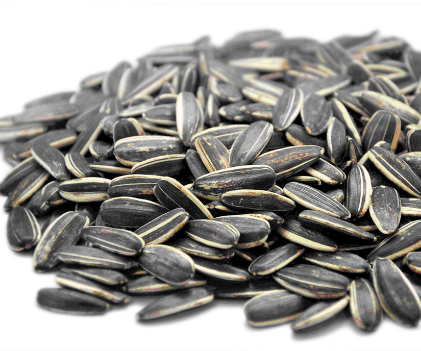 Fragrant sunflower seeds