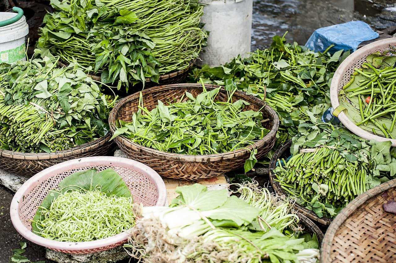 landwirtschaftlicher Spinat