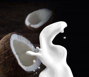 erfrischendes milchiges Kokosnussgetränk
