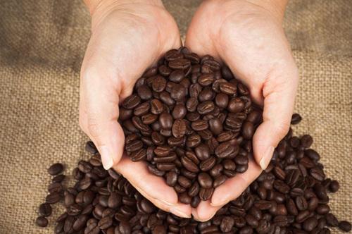 https://www.nativearakucoffee.com/shop/wp-content/uploads/2017/08/Robusta-Coffee-Beans.jpg