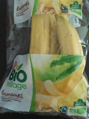 Banane Cavendish Bio Village