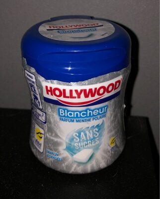Chew Gum sans sucres parfum menthe polaire
