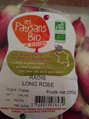 Radis long rose