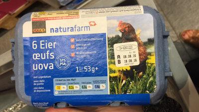 NaturaFarm: 6 Oeufs