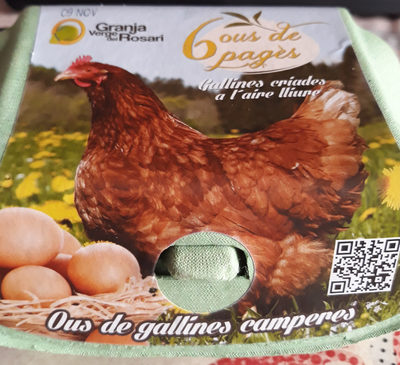 Ous de pagès - Ous de gallines camperes
